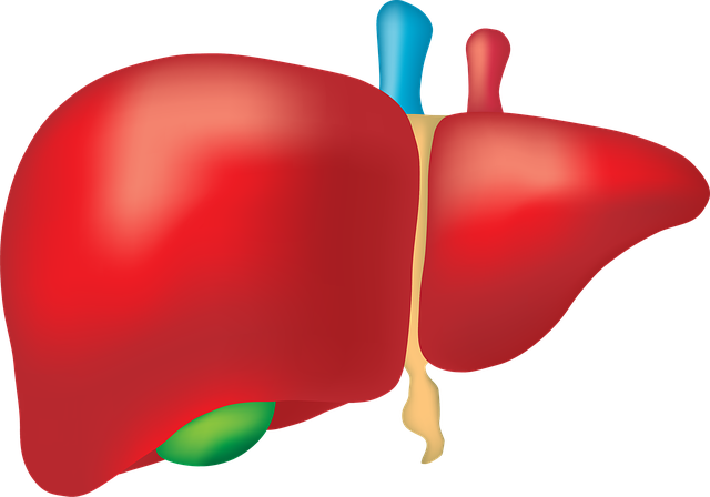 liver--thiogel-starlyn-tejada